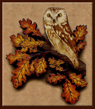 saw-wet owl tanja sova pyrography